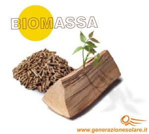 SETTORE biomassa