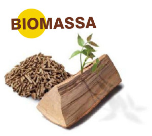 icona biomassa kit